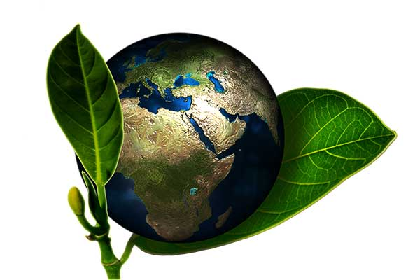 WSH Services - Our Environmental Policy